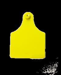 Бирка под щипцы с иглой 75*100 мм